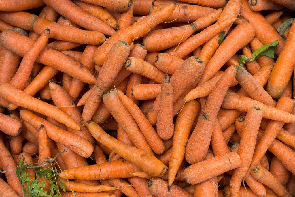 quoi-faire-avec-des-pelures-carotte-la-transformerie-montreal-quebec-anti-gaspillage